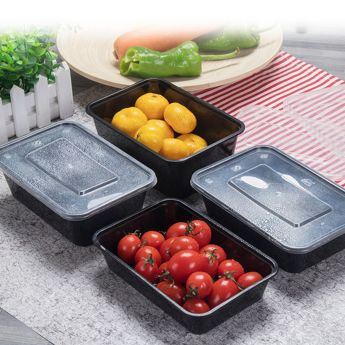 Disposable Food Containers with Food