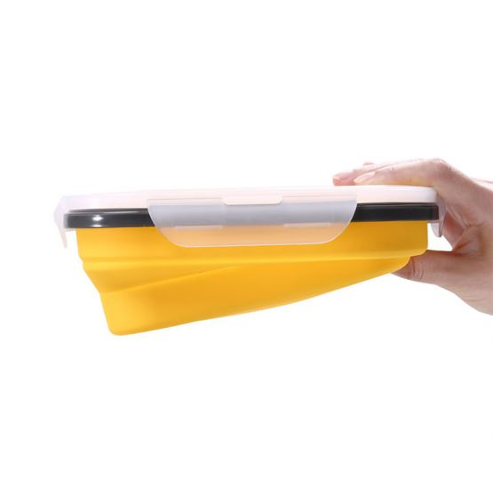 Lunch Box with Folding Properties